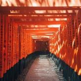 Fushumi Inari 伏見稲荷大社